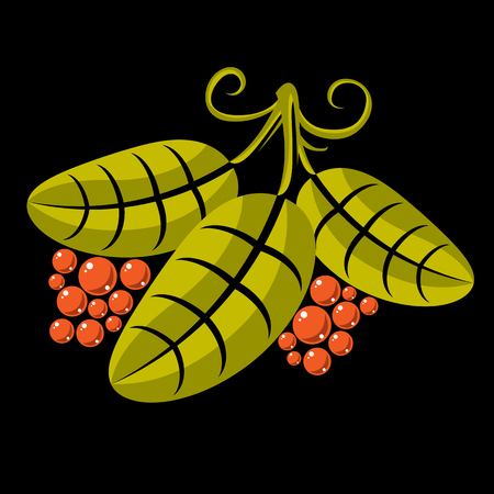 flat leaf: Three simple green vector leaves of deciduous tree, stylized nature element. Ecology symbol, can be used in graphic design. Flat leaf with tendrils and orange seeds or berries.