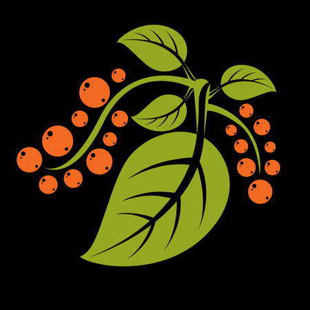 tendrils: Simple green vector tree leaf with tendrils and orange seeds, stylized nature element. Ecology symbol, can be used in graphic design. Summer or spring season illustration Illustration