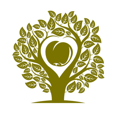 fertility: Vector illustration of tree with leaves and branches in the shape of heart with an apple inside. Fruitfulness and fertility idea symbolic picture.