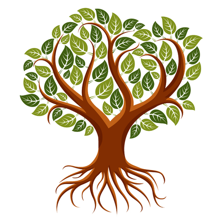 Vector art illustration of branchy tree with strong roots. Tree of life symbolic image, ecology conservation theme. Иллюстрация