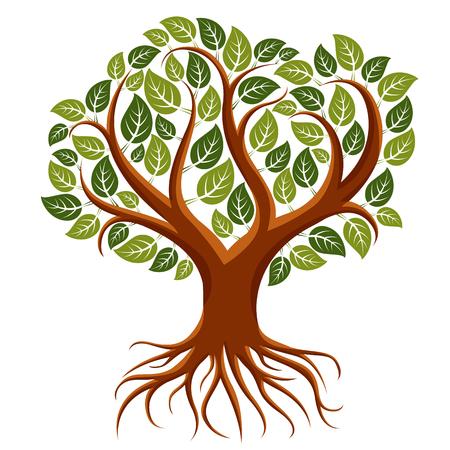 Wektor sztuki ilustracji drzewa branchy z mocnymi korzeniami. Drzewo życia symbolicznego obrazu, ochrony ekologia tematu. Ilustracje wektorowe