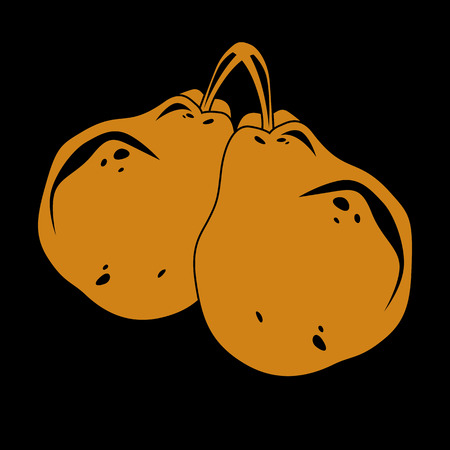Two orange simple vector pears, ripe sweet fruits illustration. Healthy and organic food, harvest season symbol. Illustration