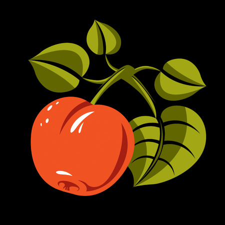 Vegetarian organic food simple illustration, vector ripe orange peach with green leaves isolated. Whole fruit, fruitfulness idea symbol.