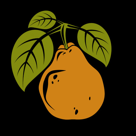 fruitful: Harvesting symbol, vector fruit isolated. Single organic sweet orange pear with green leaves, healthy food idea design icon.