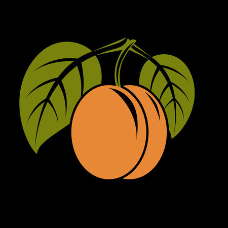 Vegetarian organic food simple illustration, vector ripe orange peach with green leaves isolated. Whole fruit, healthy eating icon