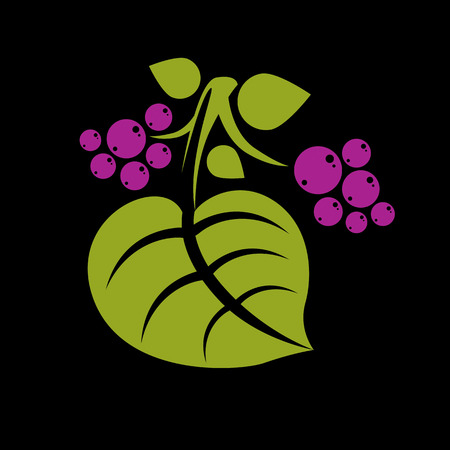 Simple green vector tree leaf with purple seeds, stylized nature element. Ecology symbol, can be used in graphic design. Summer or spring season illustration