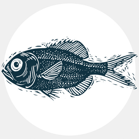 zoology: Fish species, vector marine fauna symbol. Hand drawn silhouette of fish, healthy eating. Zoology theme symbol, can be used in graphic design. Illustration