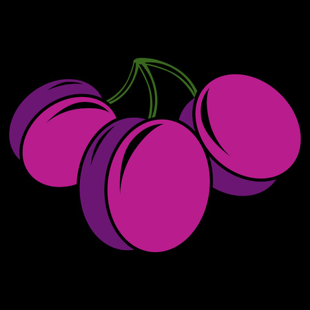 plums: Purple simple vector plums, ripe sweet fruits illustration. Healthy and organic food, harvest season symbol.