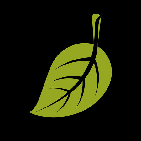 Single vector flat green leaf. Herbal and botany art symbol, spring season stylized ecology icon. Environment conservation element.