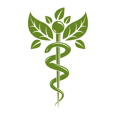 esculapio: Aesculapius vector abstract illustration created using snakes and green leaves, Caduceus symbol. Healthy lifestyle is strong heart.