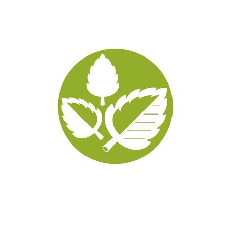 녹색 잎의 벡터 그래픽 일러스트 레이 션. 전체주의 의학, 재활 또는 약리학에 사용하기 위해 채식주의 개념적 추상 로고 타입.