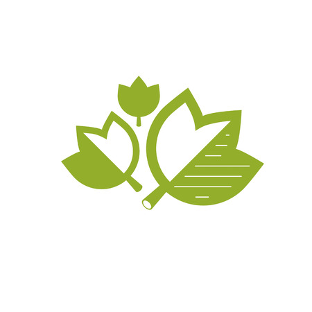 Green leaves simple graphic illustration. Phytotherapy metaphor, vector graphic emblem can be used in for use in alternative medicine, rehabilitation or pharmacology. Illustration