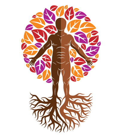 Vector athletic man created as continuation of tree with strong roots and organic autumn leaves. Wanderlust and countryside vacation idea, natural lifestyle. Illustration