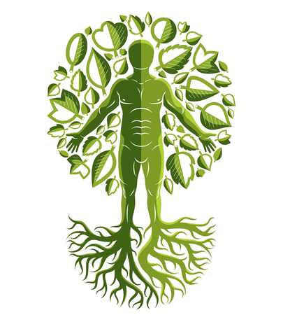 Vector illustration of human, athlete made as continuation of tree with strong roots and surrounded by eco green leaves. Mythic creature, Perun Slavic god. Illustration