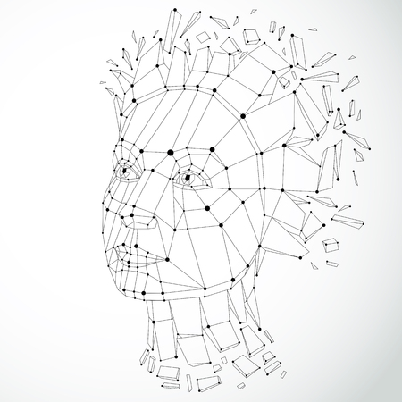 A Vector dimensional low poly female portrait with lines mesh, graphic illustration of human head broken into fragments. Standard-Bild - 98596994