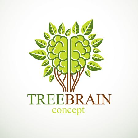 Concepto de cerebro de árbol, la sabiduría de la naturaleza, evolución inteligente. Cerebro anatómico humano en forma de árbol con hojas verdes. Alimentación del cerebro con productos dietéticos. Diseño de logotipo o icono vectorial.