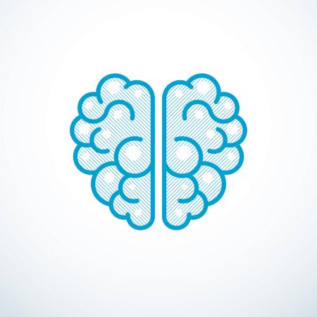 Ilustración de vector de cerebro anatómico humano
