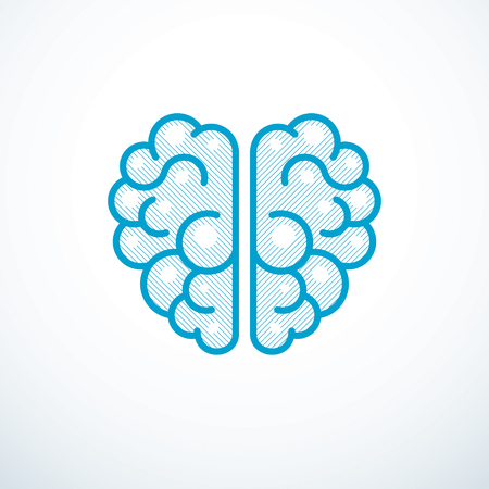 Human anatomical brain vector illustration Illustration