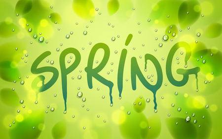 Spring word drawn on a window, fresh green leaves and water rain drops or condensate macro, vector 3d realistic transparent illustration, nature beautiful art.