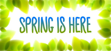 Spring is here words hand written, fresh green leaves blurred background, vector realistic illustration, pure nature beautiful art.