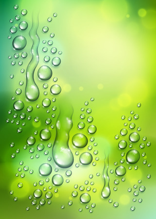 Water rain drops or condensation over blurred green nature background beyond the window, realistic transparent 3d vector illustration, easy to put over any background.
