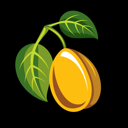 Harvesting symbol, single vector fruit isolated. Single yellow organic sour lemon with green leaves, healthy food idea design icon.