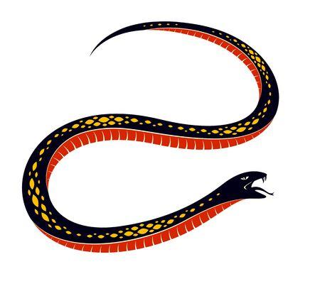 Snake vector tattoo, deadly poison dangerous serpent, venom aggressive predator reptile animal vintage style illustration.