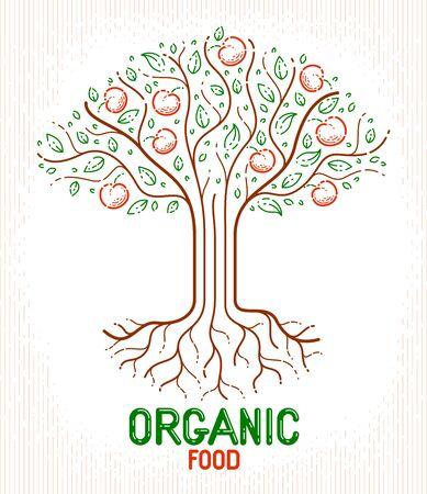 Beautiful apple fruit tree natural organic farm food vector or emblem, linear style drawing.