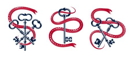 Snake wraps around vintage key, protected secret concept, turnkey and serpent old style tattoo, vector symbol or emblem. Archivio Fotografico - 129636816