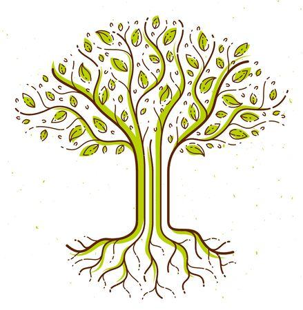 Icône de dessin de style linéaire de vecteur bel arbre, dessin parfait.