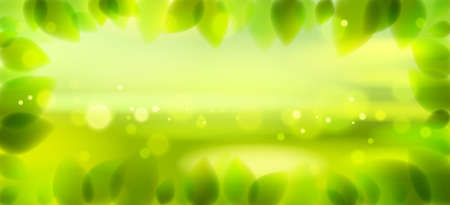 Fresh green leaves and blurred summer nature background beyond, realistic bright vector illustration with copy space for text. 矢量图像