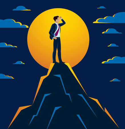 Businessman looking for opportunities standing on top peak of mountain business concept vector illustration, successful young handsome business man searches new perspectives.