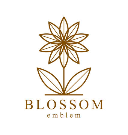 Geometric linear style vector flower   emblem isolated on white, sacred geometry floral symbol line drawing emblem, blossoming flower hotel or boutique or jewelry logotype.