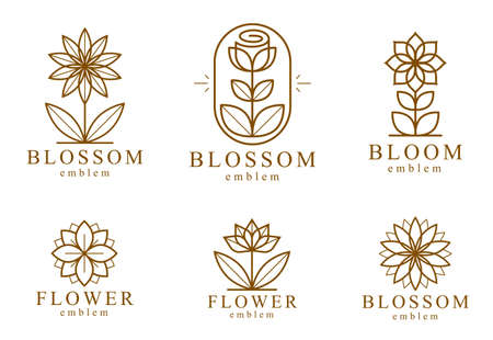 Beautiful geometric flower  vector linear designs set, sacred geometry line drawing emblems or symbols collection, blossoming flower hotel or boutique or jewelry Illustration