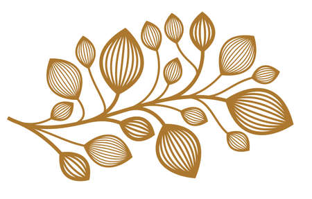 Beautiful linear floral vector design isolated on white, leaves and branches elegant text divider border element for layouts, fashion style classical emblem, luxury vintage graphics. Illustration