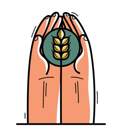 Two hands with ripe spike protecting and showing care vector flat style illustration isolated on white, cherish and defense for food and harvest concept, against famine.