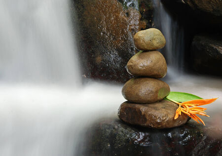 sens: Relaxing Image of Zen rock with wild flower with flowing water as background creating a sens of tranquility