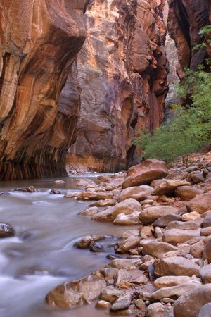 narrows: The Narrows in Zion National Park Stock Photo