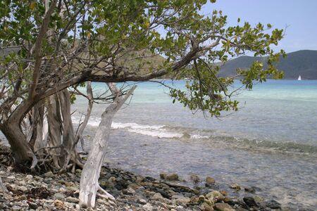 st john: rocky beach on St. John