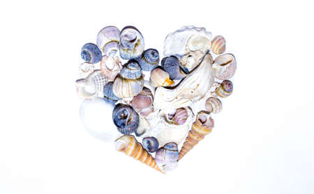 Seashell heart shape. Small marine colored orange blue pink violet sea shells of different shapes on white background. Design template Imagens