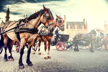 Horse-drawn carriages on the Old Market square (Grote Markt). Bruges, Belgium