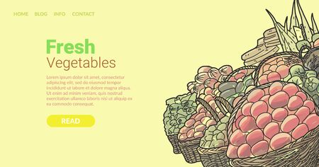 Banner inscription fresh vegetables, cartoon. Red and green organic food for healthy diet. Vegan assortment product. Landing page. Attractive greenery stands on pallet. Digital illustration. Иллюстрация