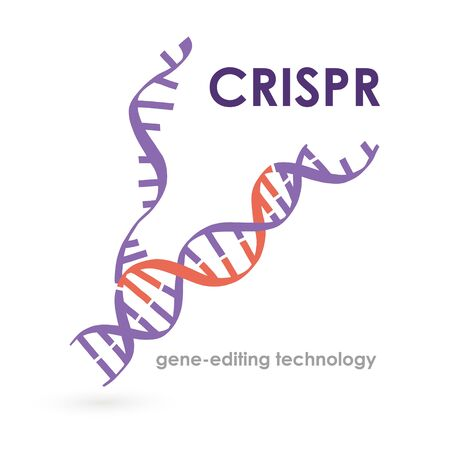 Banner inscription crispr gene-editing technology. Important scientific questions. Cell engineering workflow. Changing cell line to suit requirements. Powerful genome editing tool.