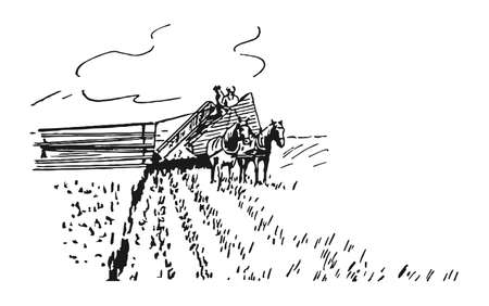 Men are planting crops in the old way. Illustration
