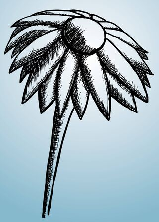 specific: Hand drawing and sketched flower. No specific flower.  Illustration