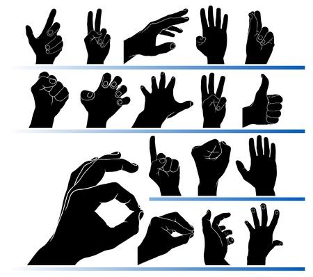 dedo me�ique: Conjunto de manos en el vector Vectores