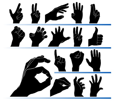 ring finger: Set of hands in the vector Illustration