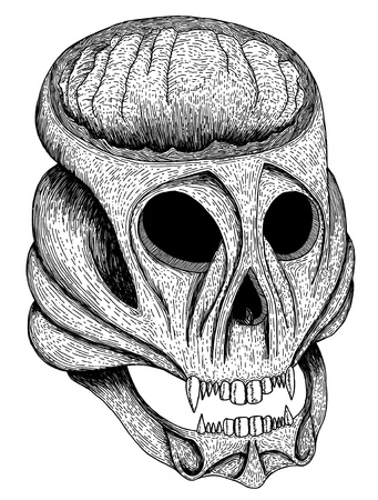 Hand drawn and sketched skull Stock Vector - 10868335