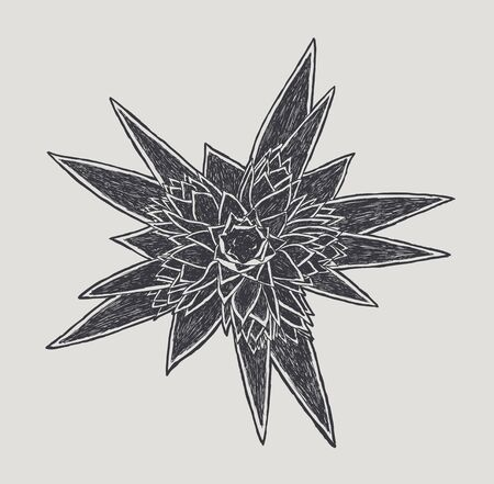 Hand drawn flower, in the vector Vector