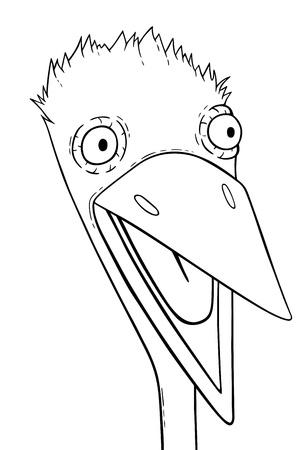 fowl: Fowl head, cartoon illustration